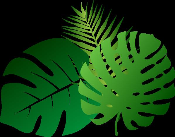 leaves-2305515
