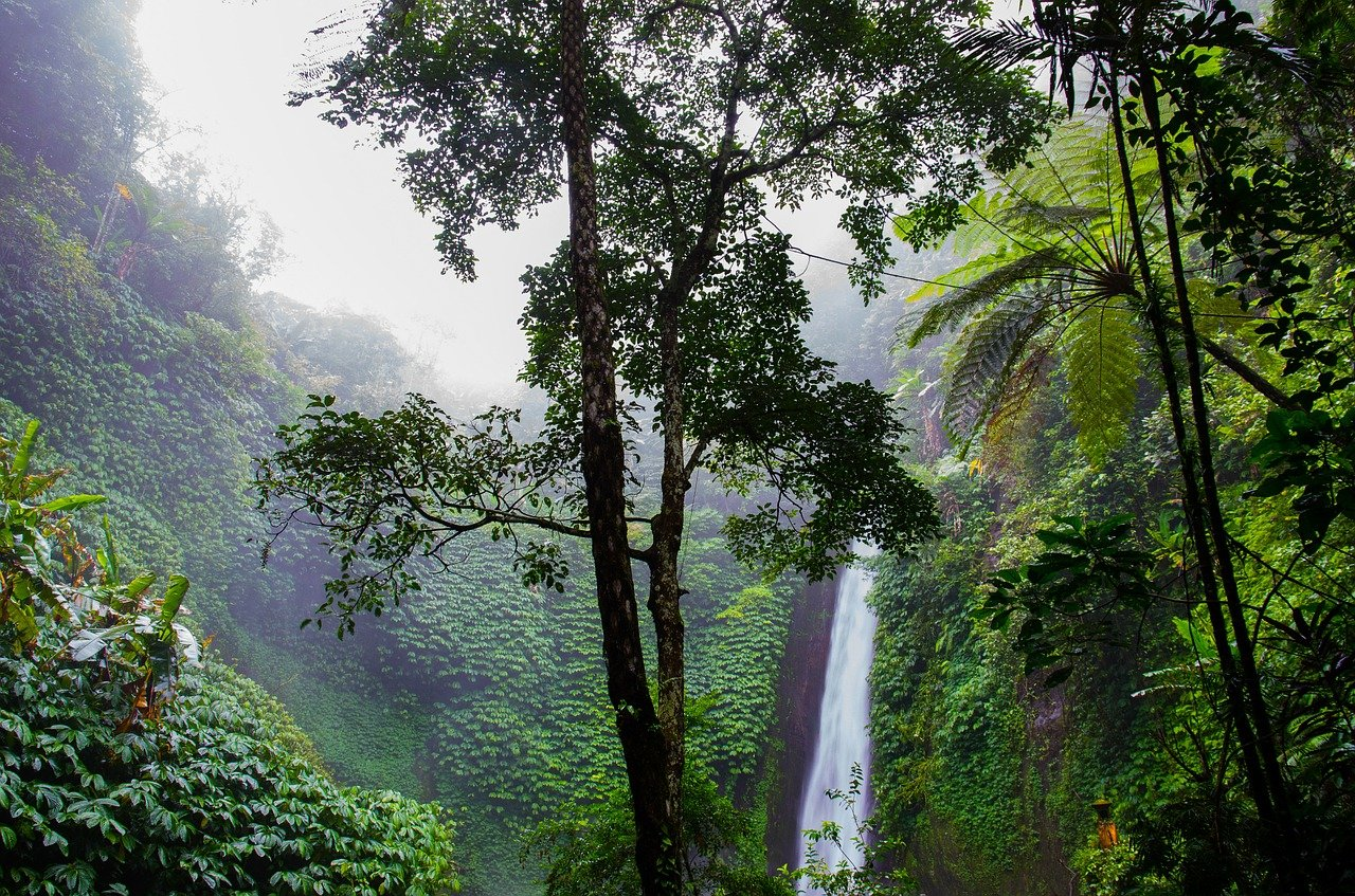 waterfall-384663_1280